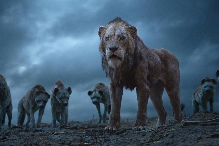 """Мужик - это """"царь зверей"""" или """"гиена"""" в современном мире?"""