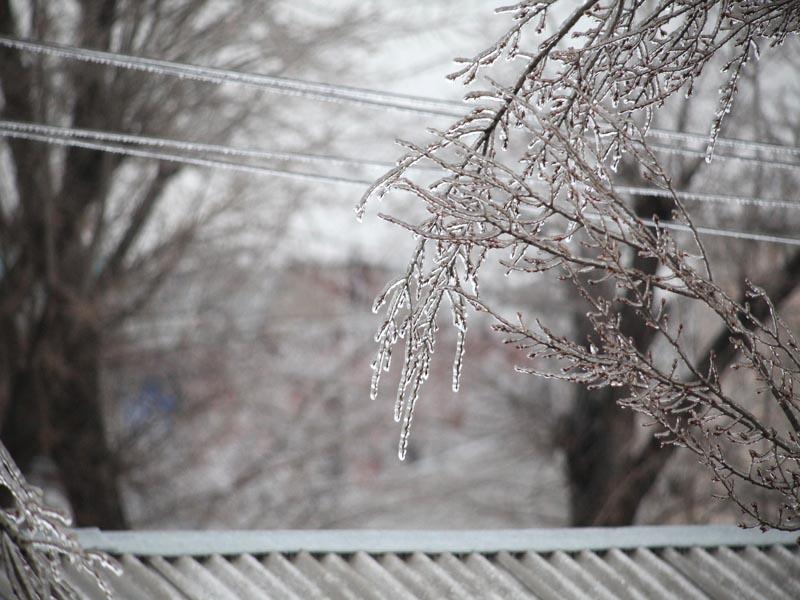 Налипание мокрого снега и обрывы линий электропередачи возможны в Адыгее