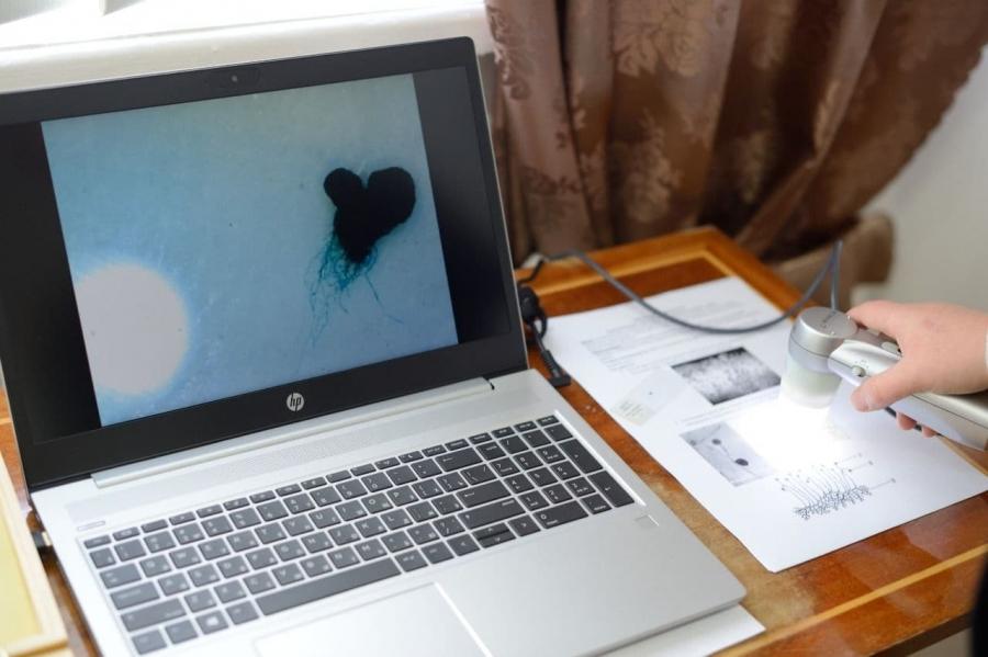 Школы Адыгеи оснастят современным компьютерным оборудованием по нацпроекту.